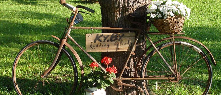 Staré kolo jako dekorace v zahradě