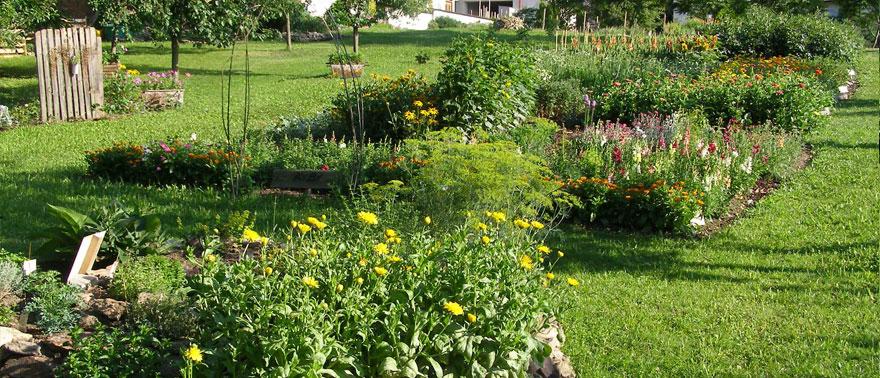 Pohled do KYBY zahrady