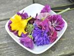 Jedlé květy ze zahrady